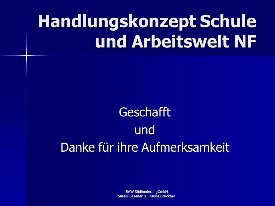 BAW Südtondern gGmbH Susan Lesener & Hauke Brückner Fazit 2007 / 2008 Plus: Plus: –Vermittlungs- und Abschlussergebnis in allen Schulbereichen –Person