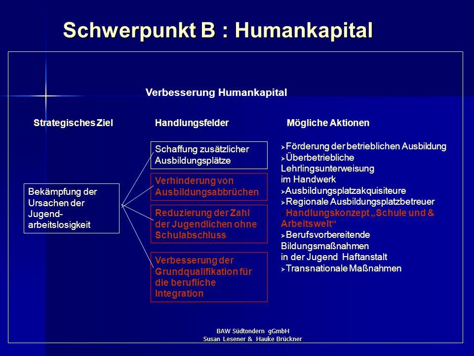 BAW Südtondern gGmbH Susan Lesener & Hauke Brückner Handlungsfelder : ESF 2007-2013 in Schleswig-Holstein Schwerpunkt A: Steigerung der Anpassungsfähi