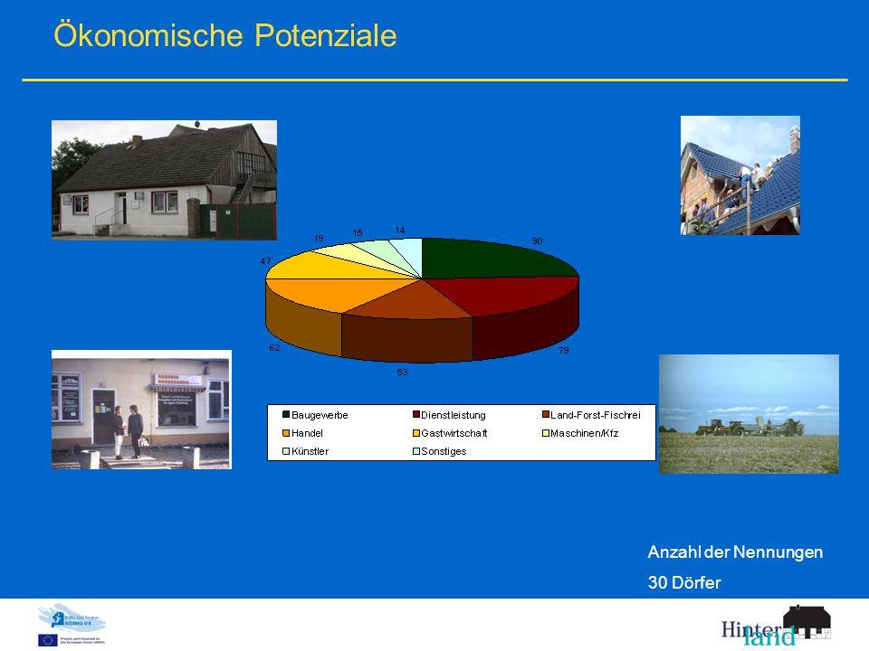 Ökonomische Potenziale Anzahl der Nennungen 30 Dörfer