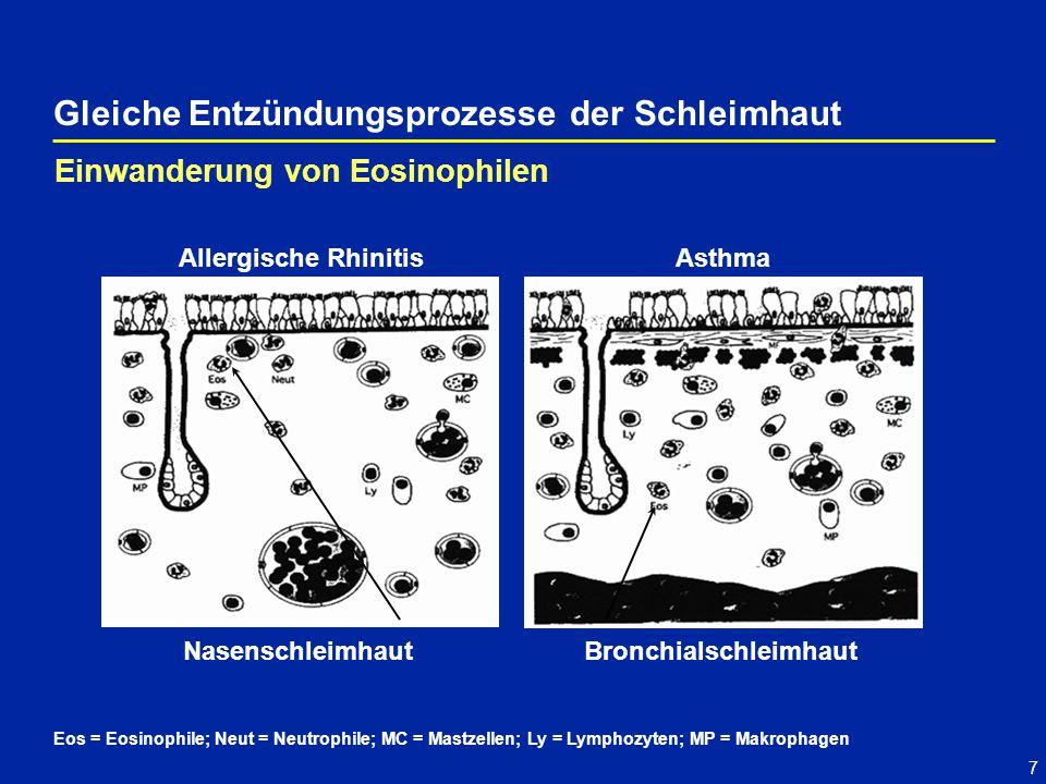 7 Gleiche Entzündungsprozesse der Schleimhaut Eos = Eosinophile; Neut = Neutrophile; MC = Mastzellen; Ly = Lymphozyten; MP = Makrophagen Einwanderung von Eosinophilen Allergische RhinitisAsthma Nasenschleimhaut Bronchialschleimhaut