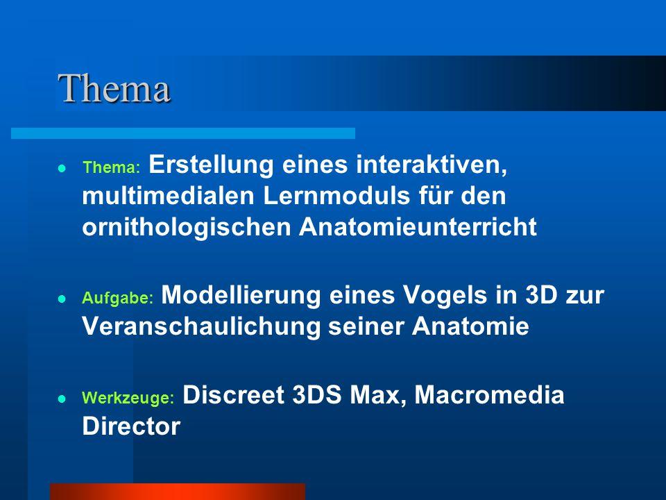 Thema Thema: Erstellung eines interaktiven, multimedialen Lernmoduls für den ornithologischen Anatomieunterricht Aufgabe: Modellierung eines Vogels in 3D zur Veranschaulichung seiner Anatomie Werkzeuge: Discreet 3DS Max, Macromedia Director