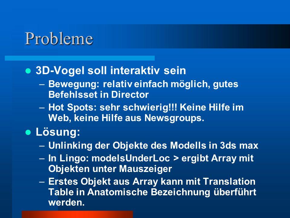 Probleme 3D-Vogel soll interaktiv sein –Bewegung: relativ einfach möglich, gutes Befehlsset in Director –Hot Spots: sehr schwierig!!.