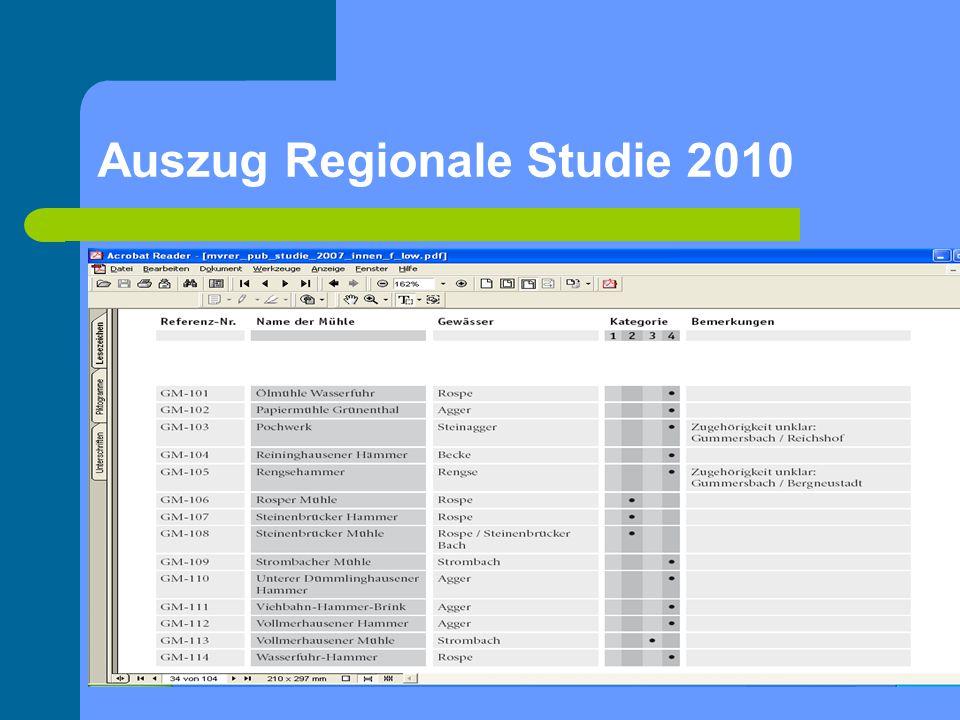 Auszug Regionale Studie 2010