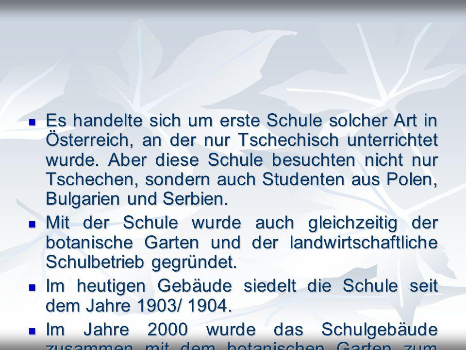 Es handelte sich um erste Schule solcher Art in Österreich, an der nur Tschechisch unterrichtet wurde. Aber diese Schule besuchten nicht nur Tschechen