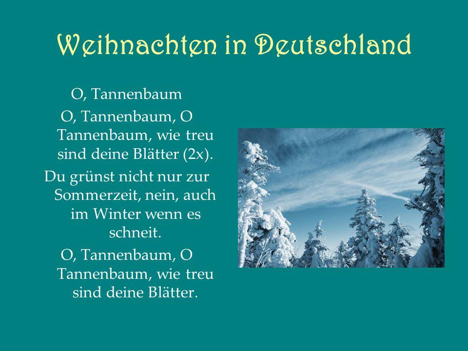O, Tannenbaum O, Tannenbaum, O Tannenbaum, wie treu sind deine Blätter (2x).