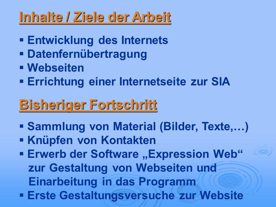 Inhalte / Ziele der Arbeit Entwicklung des Internets Datenfernübertragung Webseiten Errichtung einer Internetseite zur SIA Bisheriger Fortschritt Samm