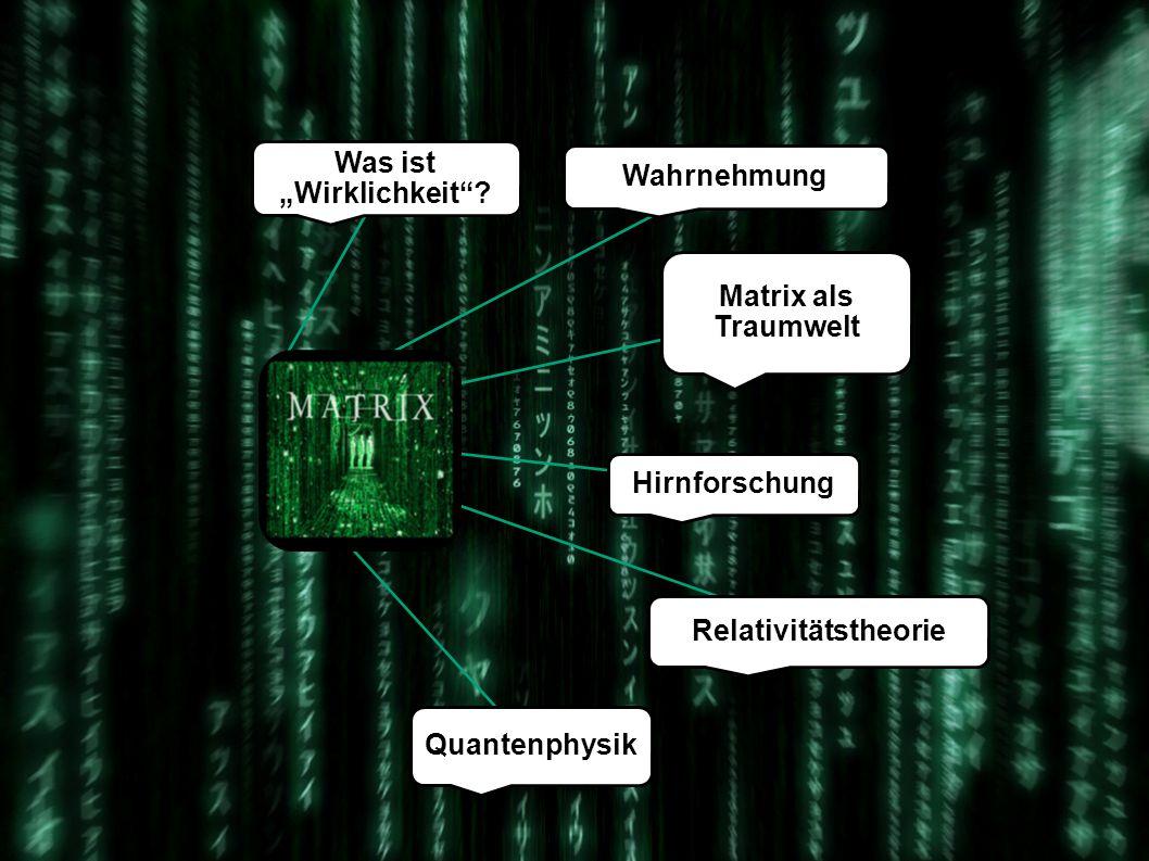 The Matrix Der Blick durch die wissenschaftliche Brille