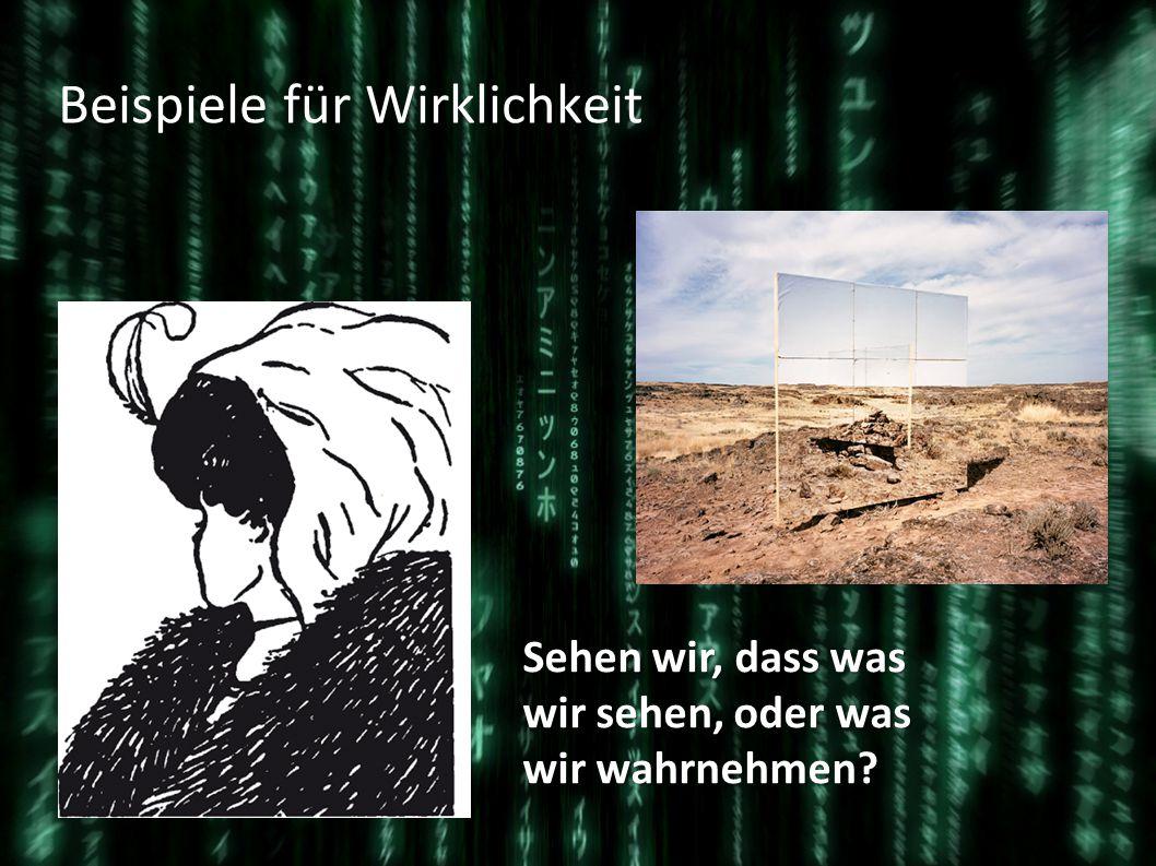 Wirklichkeit in der Matrix Die wirkliche Welt, wahrscheinlich im Jahr 2199 Das Computerprogramm Matrix im Jahr 1999