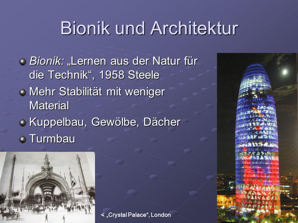Bionik und Architektur Bionik: Lernen aus der Natur für die Technik, 1958 Steele Mehr Stabilität mit weniger Material Kuppelbau, Gewölbe, Dächer Turmb