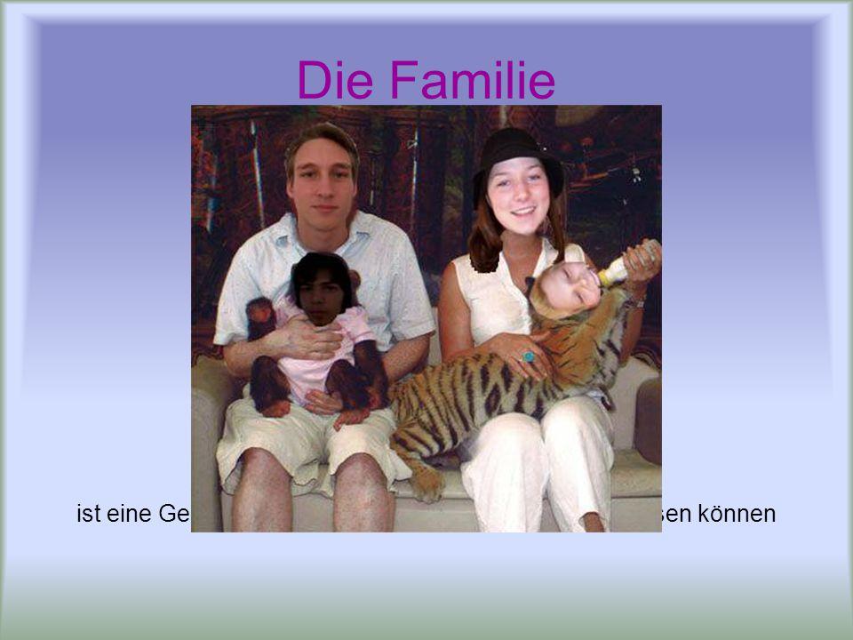 Die Familie ist eine Gemeinschaft, in der wir die große Probleme lösen können