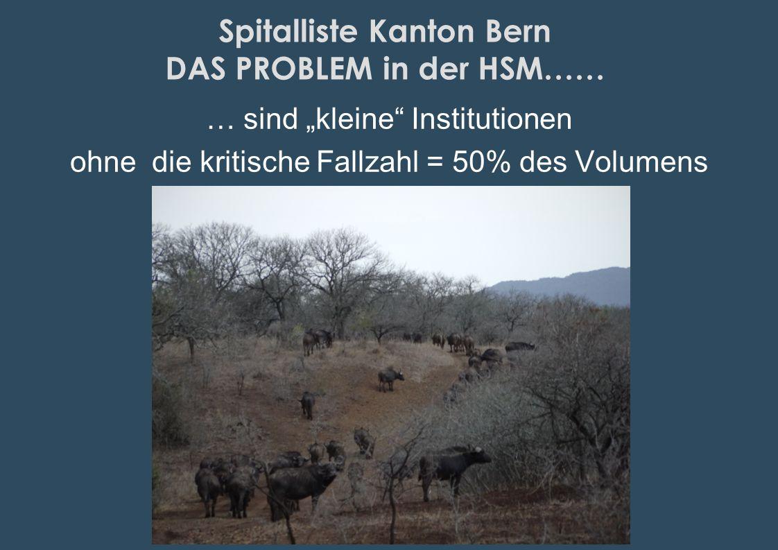 Spitalliste Kanton Bern DAS PROBLEM in der HSM…… … sind kleine Institutionen ohne die kritische Fallzahl = 50% des Volumens