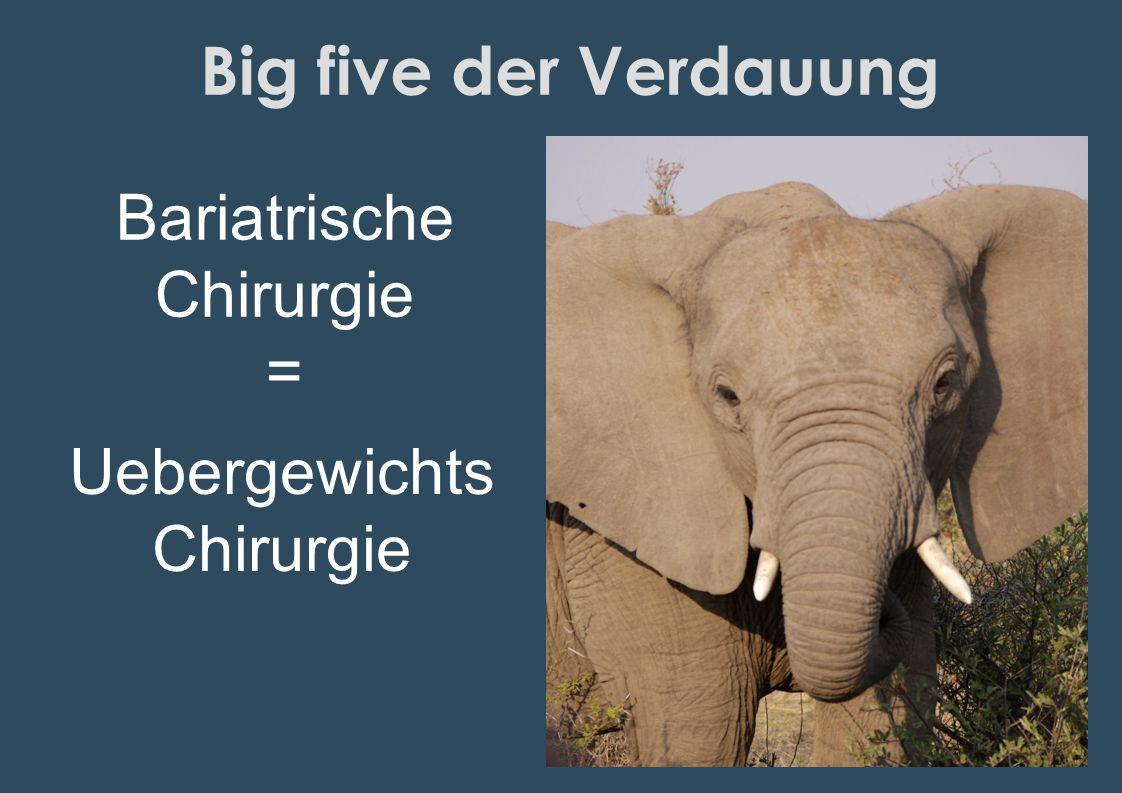 Big five der Verdauung Bariatrische Chirurgie = Uebergewichts Chirurgie
