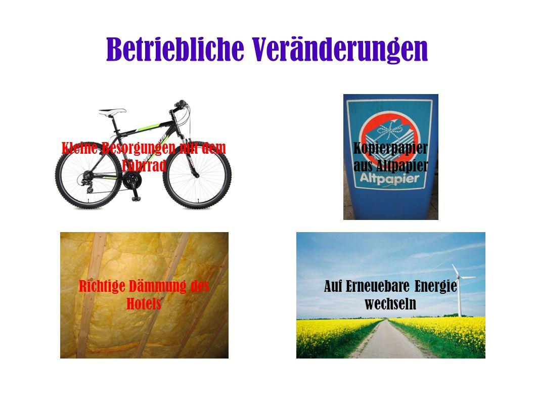 Auf Erneuebare Energie wechseln Richtige Dämmung des Hotels Kopierpapier aus Altpapier Kleine Besorgungen mit dem Fahrrad Betriebliche Veränderungen