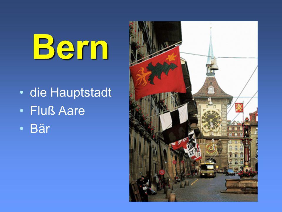 Bern Bern die Hauptstadt Fluß Aare Bär