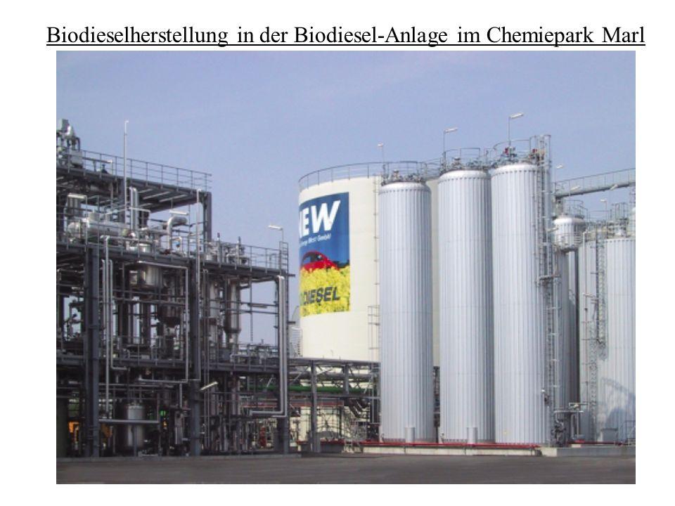 Funktionsweise - Anlieferung von Rapsöl aus Neuss, Methanol stammt von der Firma Sasol im Chemiepark - werden zusammen mit Natriummethylat in einen Reaktor gespeist - eine Fettphase und Glycerin entstehen - das Glycerin wird mehrfach gereinigt und später an die Phrama- und Kosmetikindustrie verkauft - die Fette werden von dem Glycerin getrennt und zusammen mit angesäuerten Wasser und Methanol umgeestert - die entstandenen Ester werden zweimal gereinigt