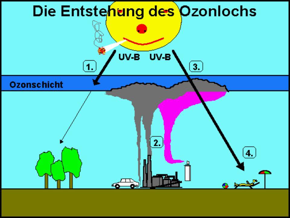 Ozonloch Entwicklung des Ozonlochs am Nordpol 1996 - 2003(Arktis) Entwickung des Ozonlochs am Südpol (Antarktis)