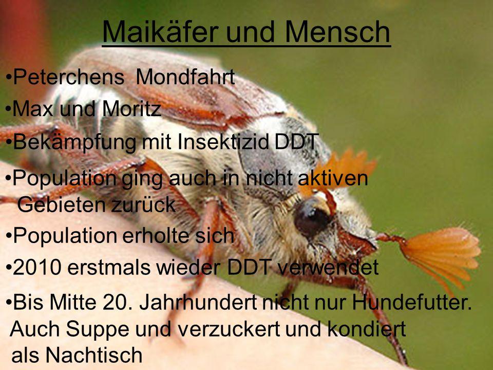 Maikäfer und Mensch Peterchens Mondfahrt Max und Moritz Bekämpfung mit Insektizid DDT Population ging auch in nicht aktiven Gebieten zurück Population