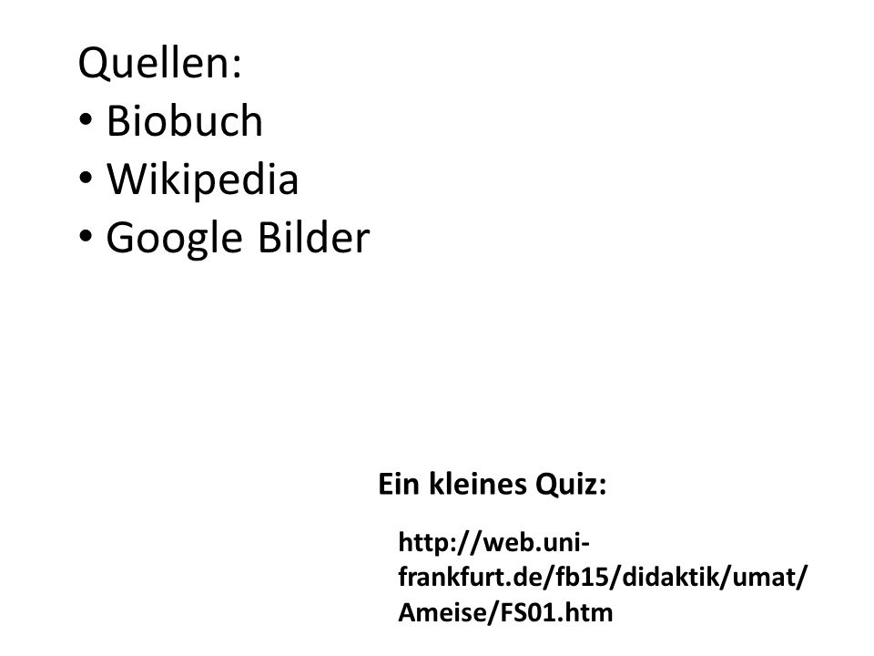 http://web.uni- frankfurt.de/fb15/didaktik/umat/ Ameise/FS01.htm Quellen: Biobuch Wikipedia Google Bilder Ein kleines Quiz: