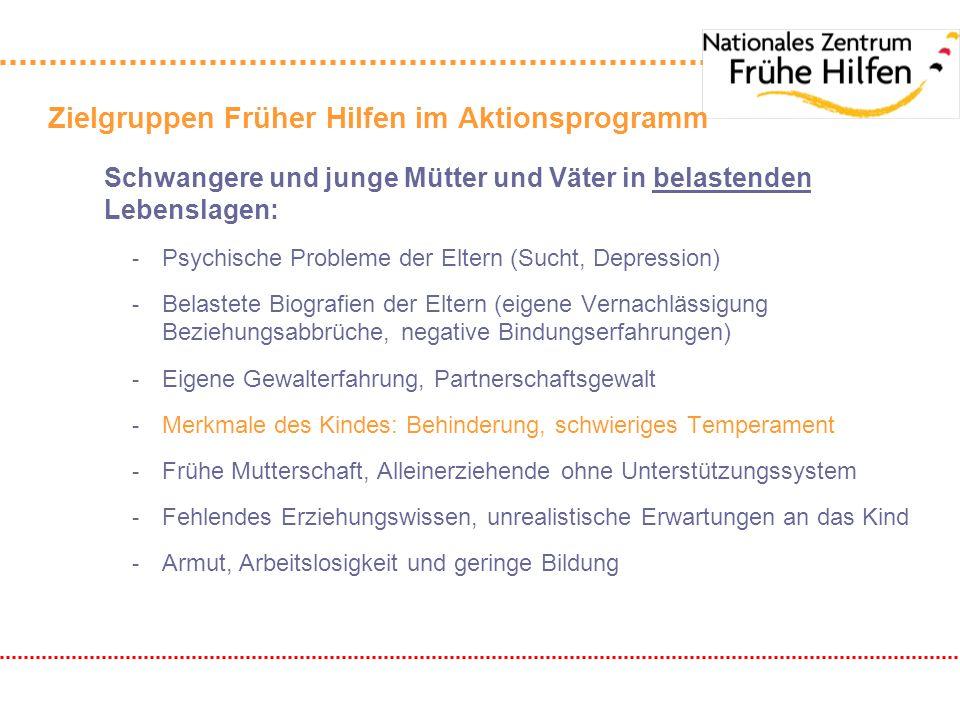 Kooperation im Bereich Früher Hilfen: Häufigkeit der Kooperation (1 = selten; 5 = oft) Häufigkeit der Kooperation IFFSPZ Jugendamt 3,343,26 Gesundheitsamt 3,843,34