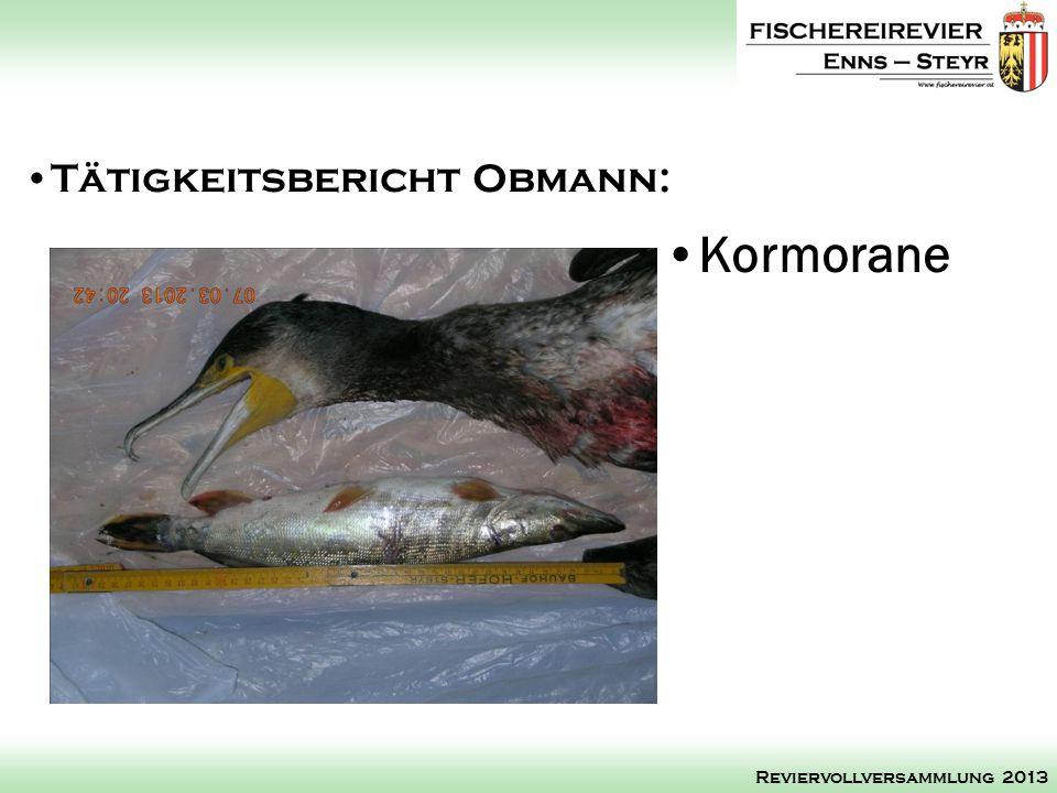 Kormorane Tätigkeitsbericht Obmann: Reviervollversammlung 2013