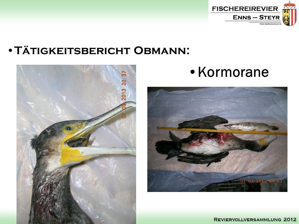 Kormorane Tätigkeitsbericht Obmann: Reviervollversammlung 2012