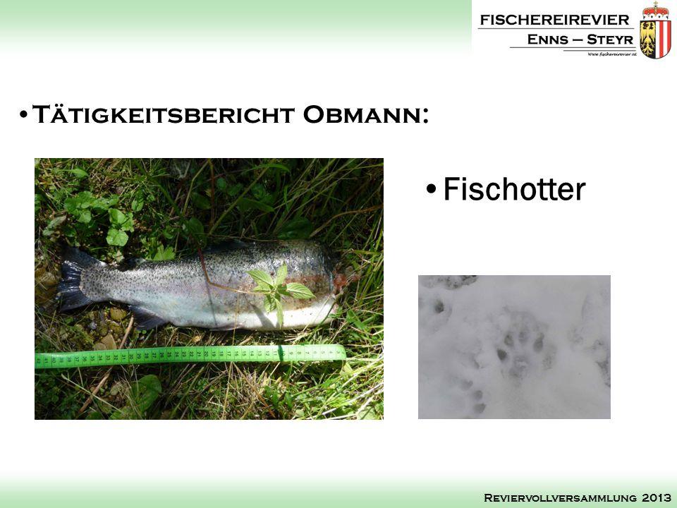 Fischotter Tätigkeitsbericht Obmann: Reviervollversammlung 2013