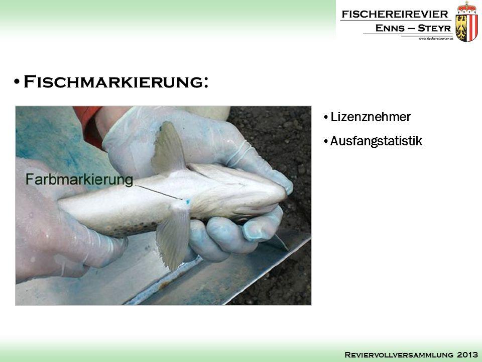 Lizenznehmer Ausfangstatistik Fischmarkierung: Reviervollversammlung 2013