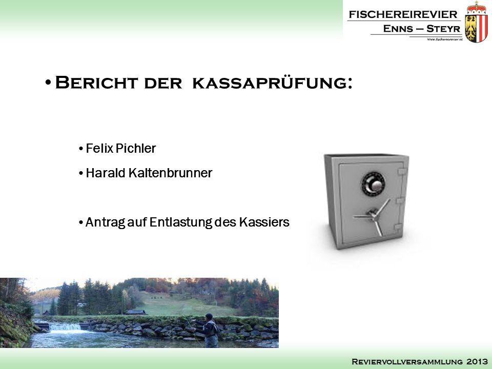 Felix Pichler Harald Kaltenbrunner Antrag auf Entlastung des Kassiers Bericht der kassaprüfung: Reviervollversammlung 2013