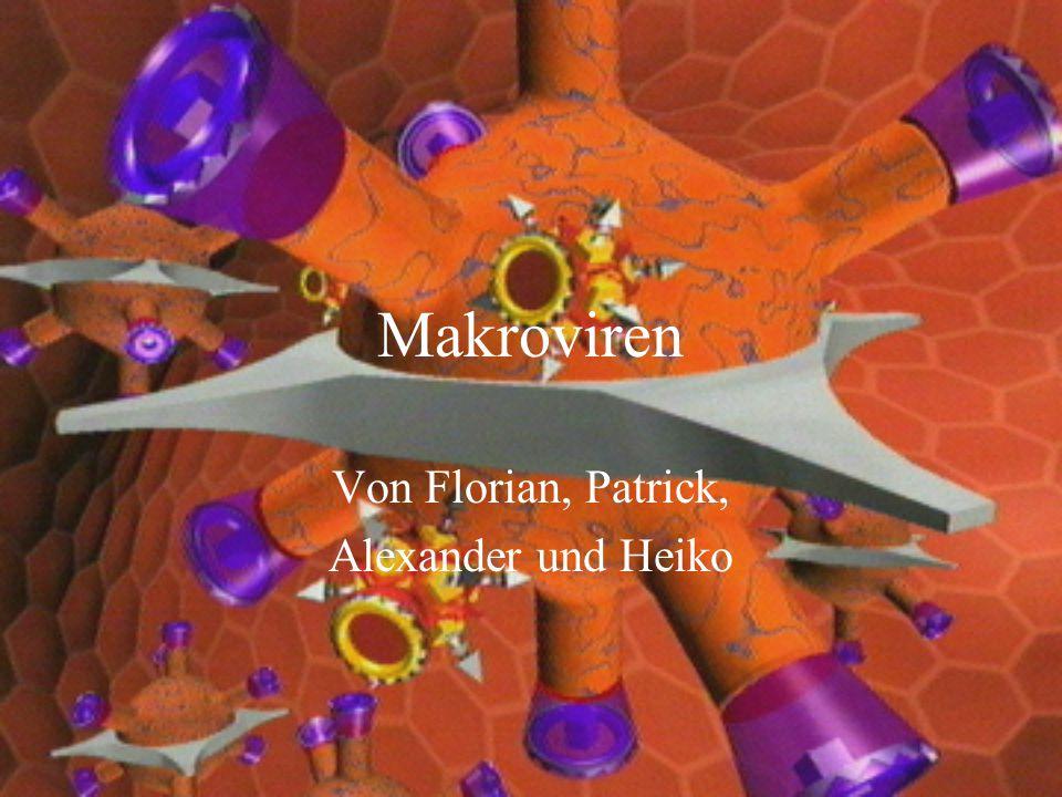 Funktionsweise Die meisten Makroviren benutzen sog.