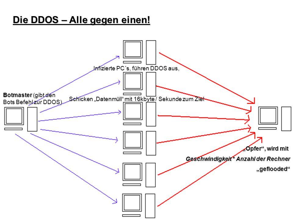 Die DDOS – Alle gegen einen! Botmaster (gibt den Bots Befehl zur DDOS) Infizierte PC´s, führen DDOS aus, Schicken Datenmüll mit 16kbyte / Sekunde zum