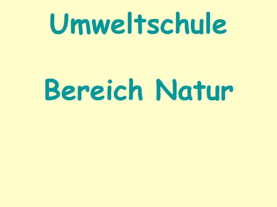 Umweltschule Bereich Natur