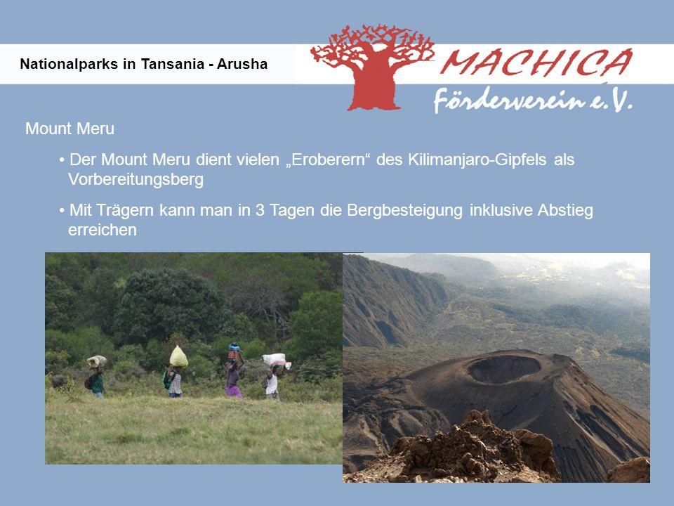 Nationalparks in Tansania - Arusha Mount Meru Der Mount Meru dient vielen Eroberern des Kilimanjaro-Gipfels als Vorbereitungsberg Mit Trägern kann man