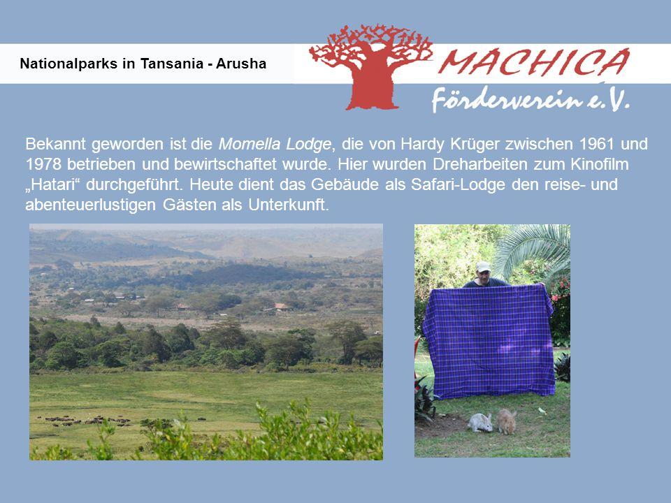 Nationalparks in Tansania - Arusha