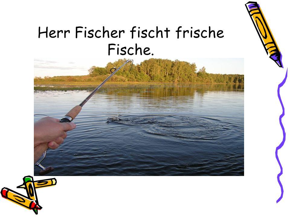 Herr Fischer fischt frische Fische.