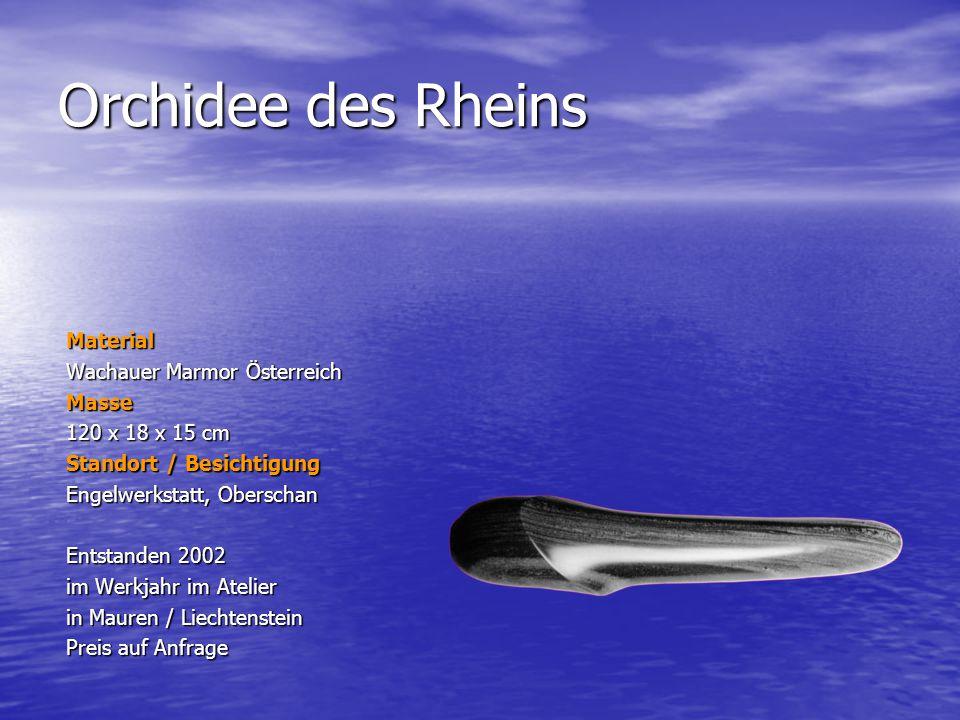 Orchidee des Rheins Material Wachauer Marmor Österreich Masse 120 x 18 x 15 cm Standort / Besichtigung Engelwerkstatt, Oberschan Entstanden 2002 im We