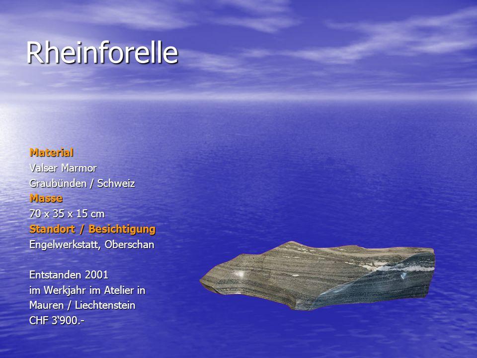 Rheinforelle Material Valser Marmor Graubünden / Schweiz Masse 70 x 35 x 15 cm Standort / Besichtigung Engelwerkstatt, Oberschan Entstanden 2001 im We