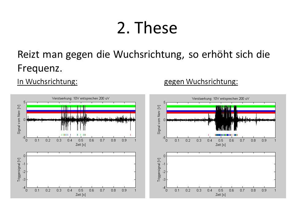 2. These Reizt man gegen die Wuchsrichtung, so erhöht sich die Frequenz. In Wuchsrichtung:gegen Wuchsrichtung: