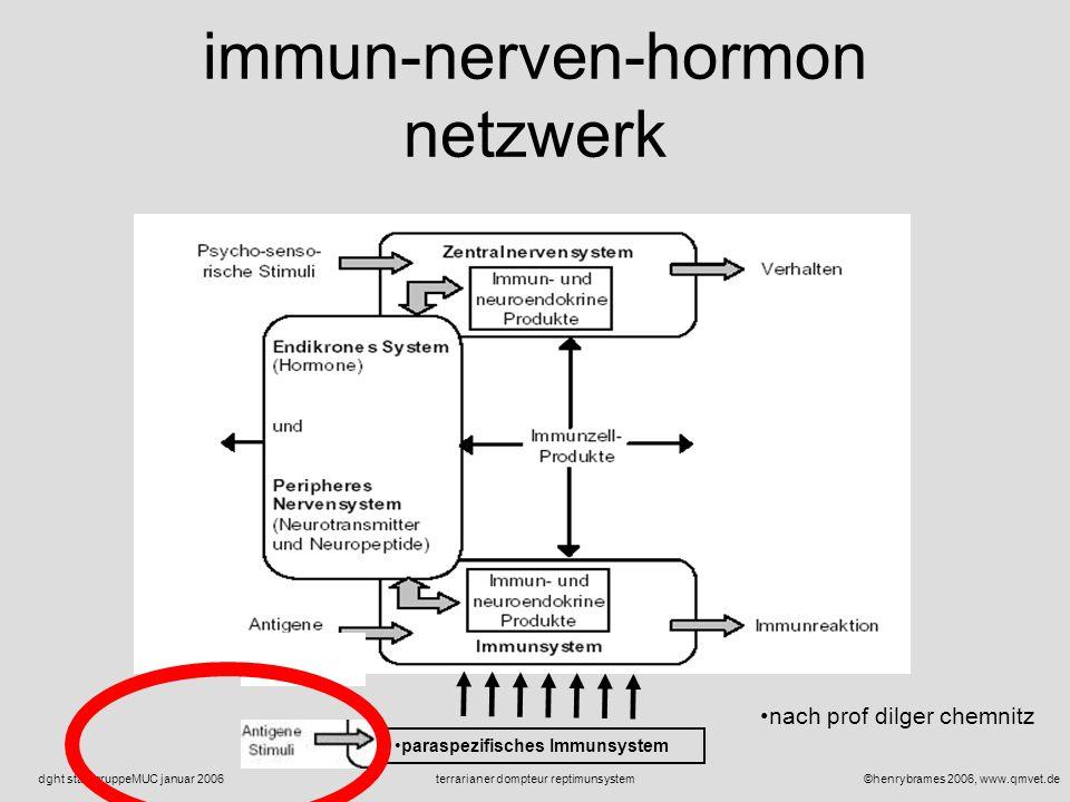 ©henrybrames 2006, www.qmvet.deterrarianer dompteur reptimunsystemdght stadtgruppeMUC januar 2006 reptilien abwehrsystem reptimunsystem: immun- nerven