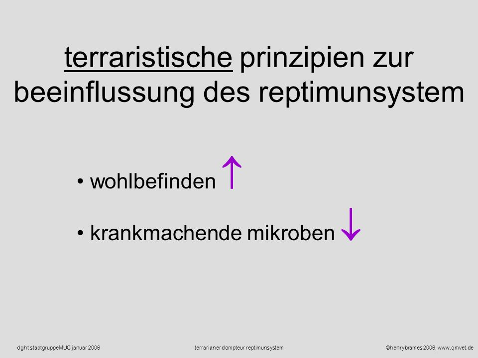 ©henrybrames 2006, www.qmvet.deterrarianer dompteur reptimunsystemdght stadtgruppeMUC januar 2006 fragen reptimunsystem IS+winterruhe IS+sommerruhe IS+lichtqualität IS+lichtdynamik IS+energie ???