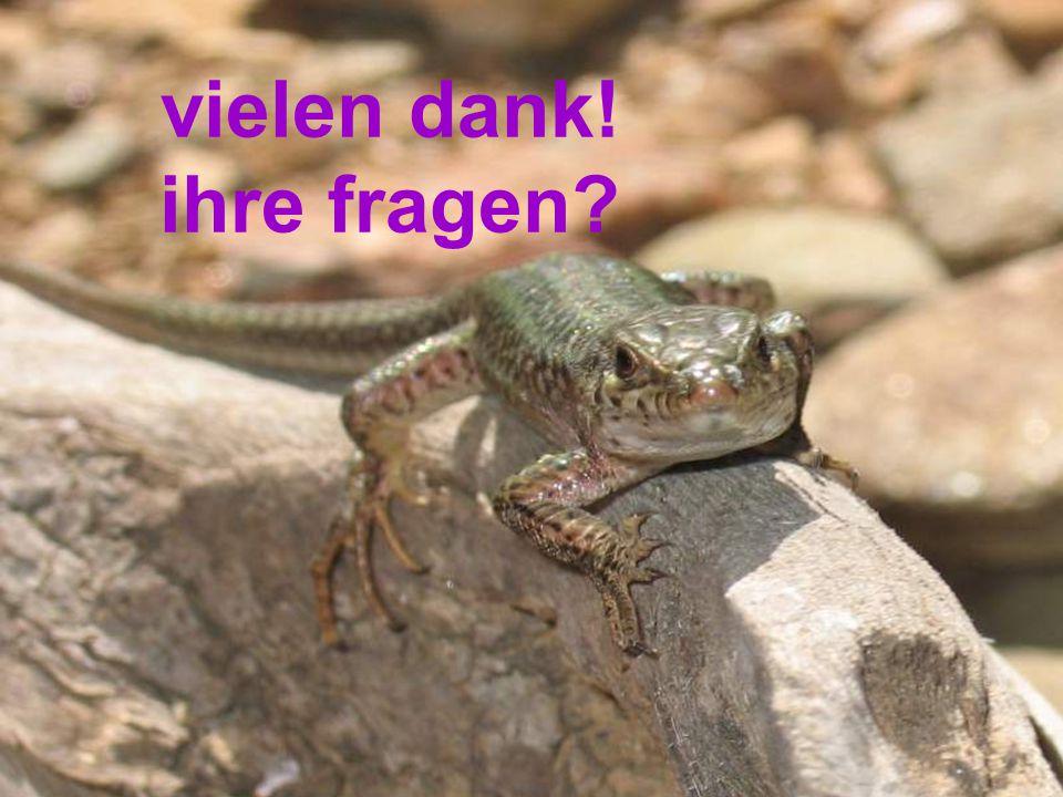 ©henrybrames 2006, www.qmvet.deterrarianer dompteur reptimunsystemdght stadtgruppeMUC januar 2006 meine fragen warum spielt das paraspez system eine so gewichtige rolle bei reptilien.
