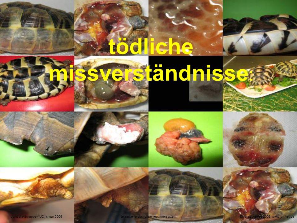 ©henrybrames 2006, www.qmvet.deterrarianer dompteur reptimunsystemdght stadtgruppeMUC januar 2006 grundproblem-reptiliengefühl: stammen schon mann und