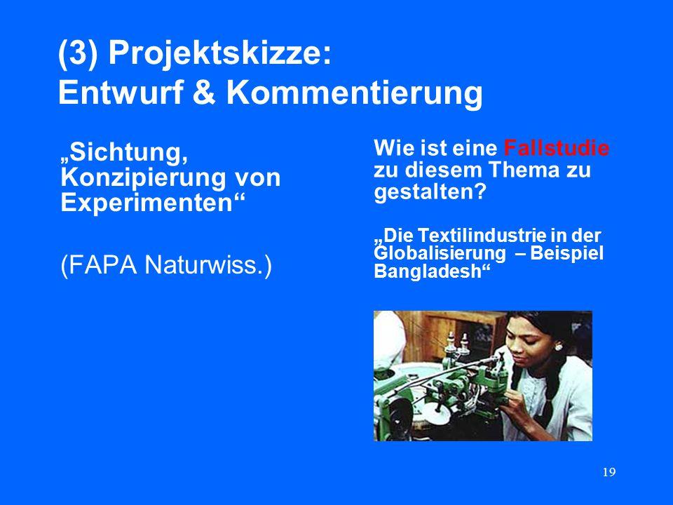19 (3) Projektskizze: Entwurf & Kommentierung Sichtung, Konzipierung von Experimenten (FAPA Naturwiss.) Wie ist eine Fallstudie zu diesem Thema zu ges