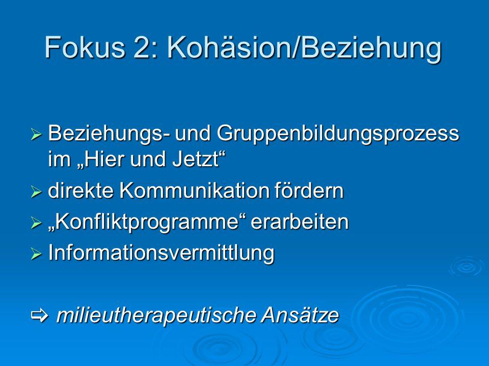 Fokus 2: Kohäsion/Beziehung Beziehungs- und Gruppenbildungsprozess im Hier und Jetzt Beziehungs- und Gruppenbildungsprozess im Hier und Jetzt direkte