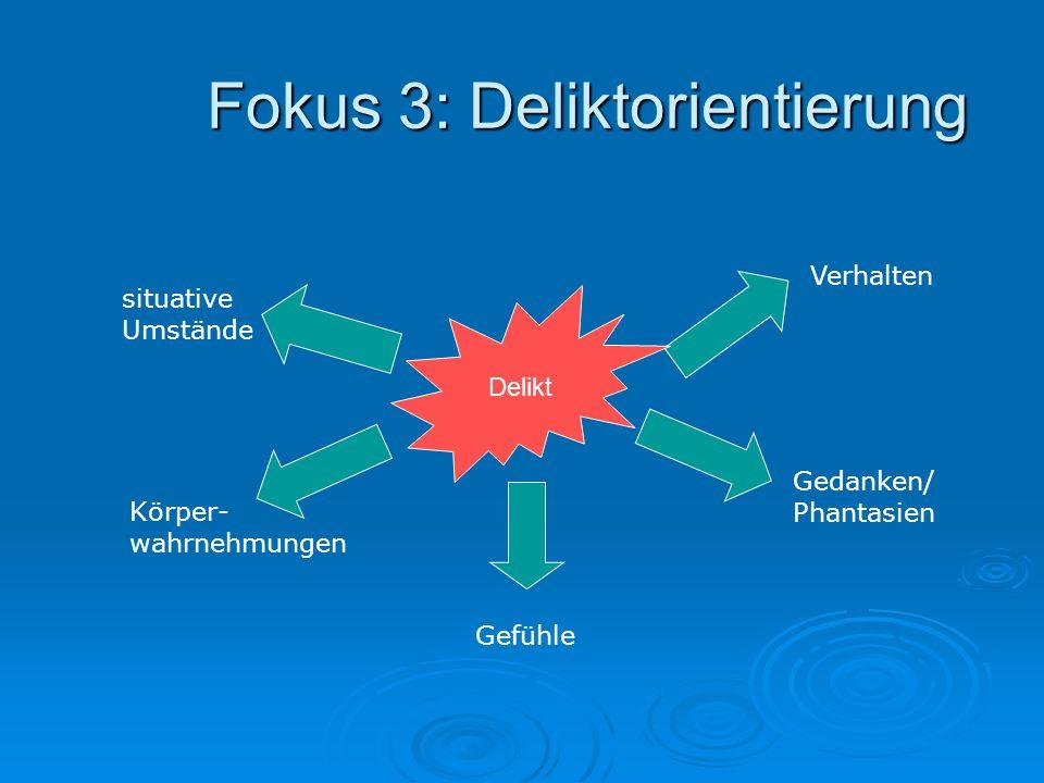 Fokus 3: Deliktorientierung situative Umstände Körper- wahrnehmungen Gefühle Gedanken/ Phantasien Verhalten Delikt