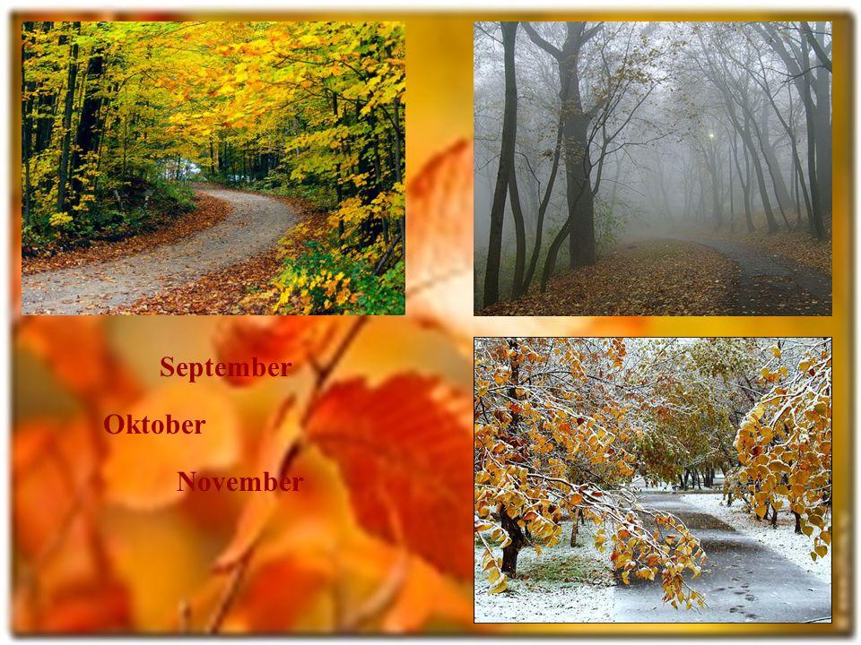 Der Herbst Der goldene Herbst