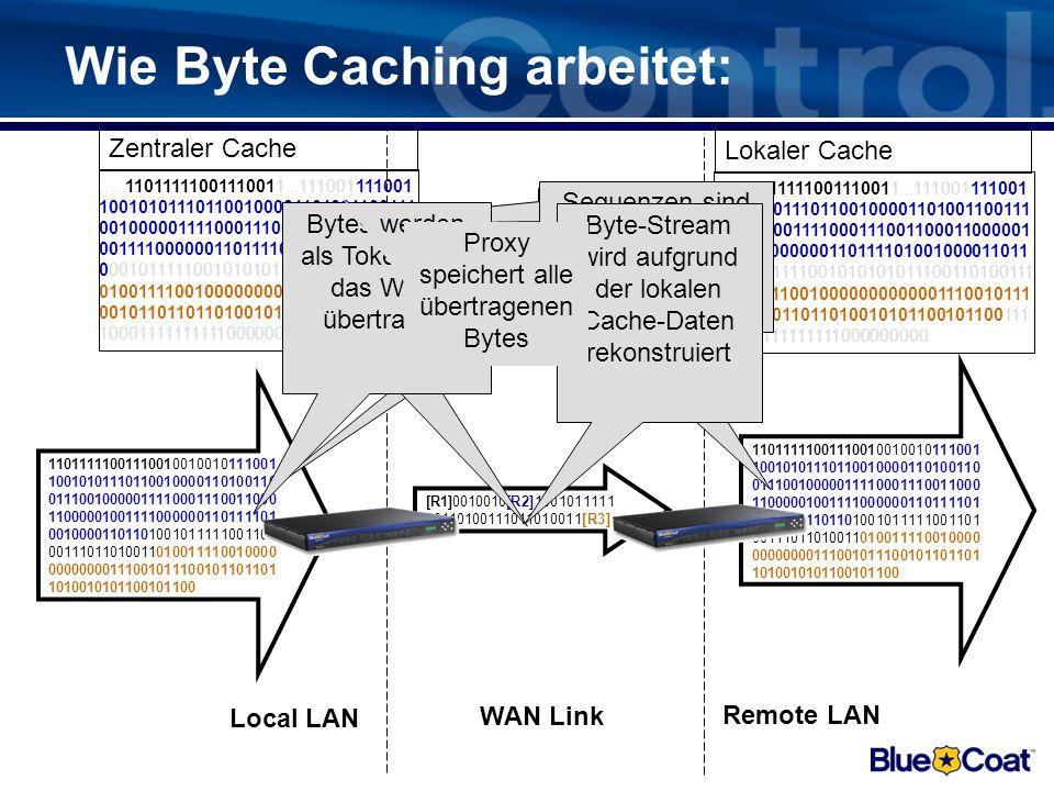 Objekt Caching: Object-Caches für: –HTTP/HTTPS-Caching –Caching von Audio/Video Streams –CIFS-Caching Object-Cache Vorteile: –Schneller Antwortzeiten