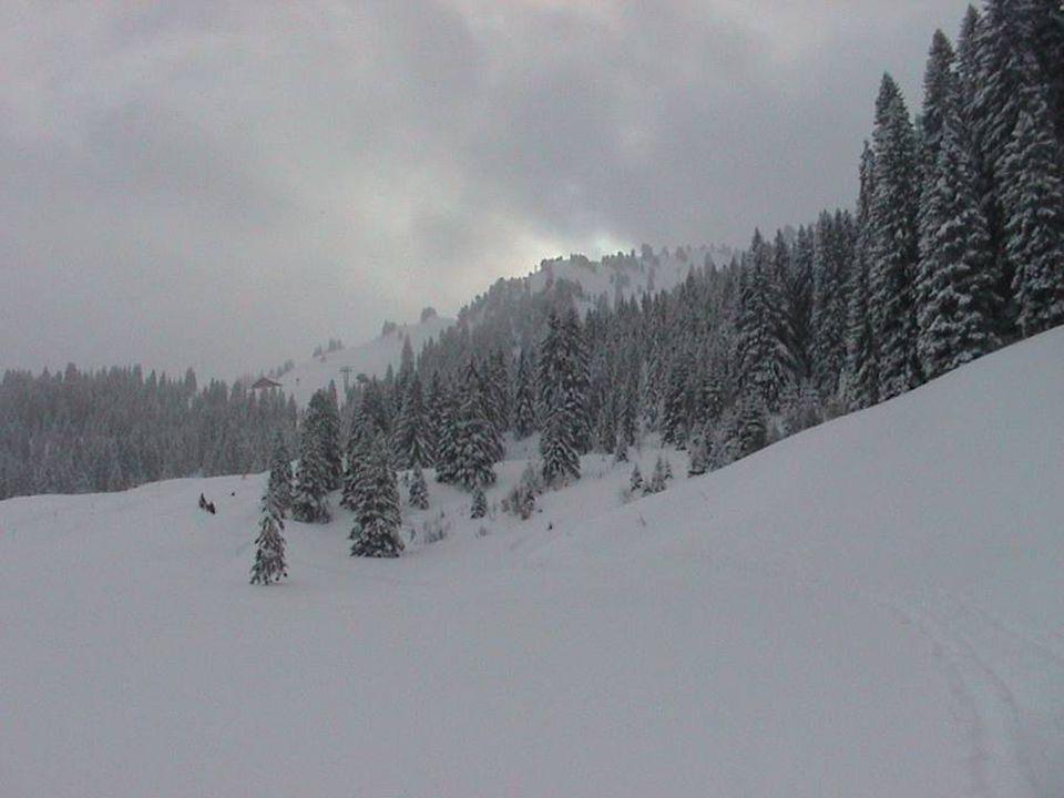 5.Kurstag Sunnehörnli (2246 m) Datum: 29. Januar 2006 Datum: 29.