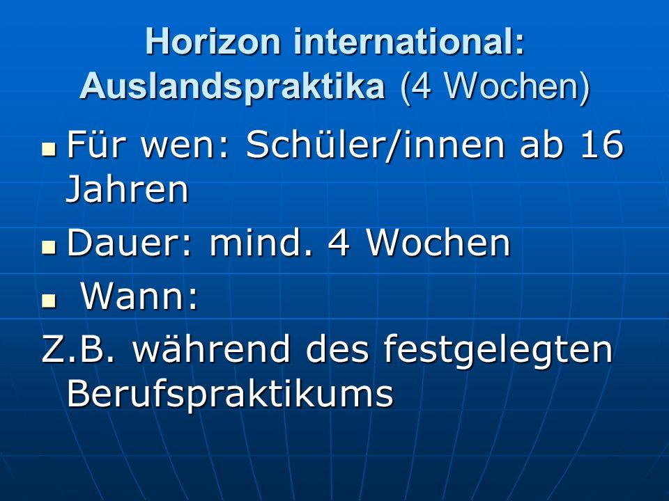 Horizon international: Auslandspraktika (4 Wochen) Für wen: Schüler/innen ab 16 Jahren Für wen: Schüler/innen ab 16 Jahren Dauer: mind. 4 Wochen Dauer