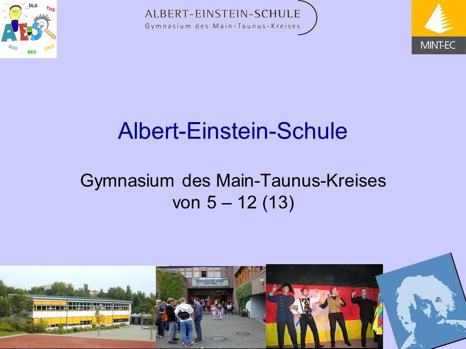 Albert-Einstein-Schule Gymnasium des Main-Taunus-Kreises von 5 – 12 (13)