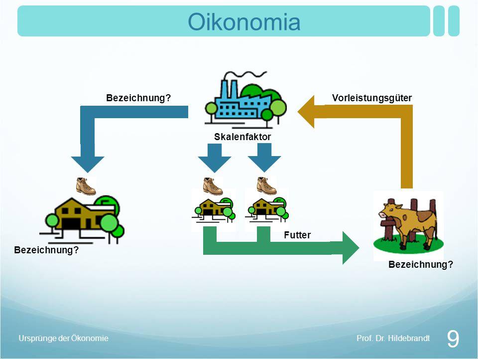 Oikonomia Skalenfaktor Prof. Dr. Hildebrandt 9 Ursprünge der Ökonomie Bezeichnung? VorleistungsgüterBezeichnung? Futter Bezeichnung?